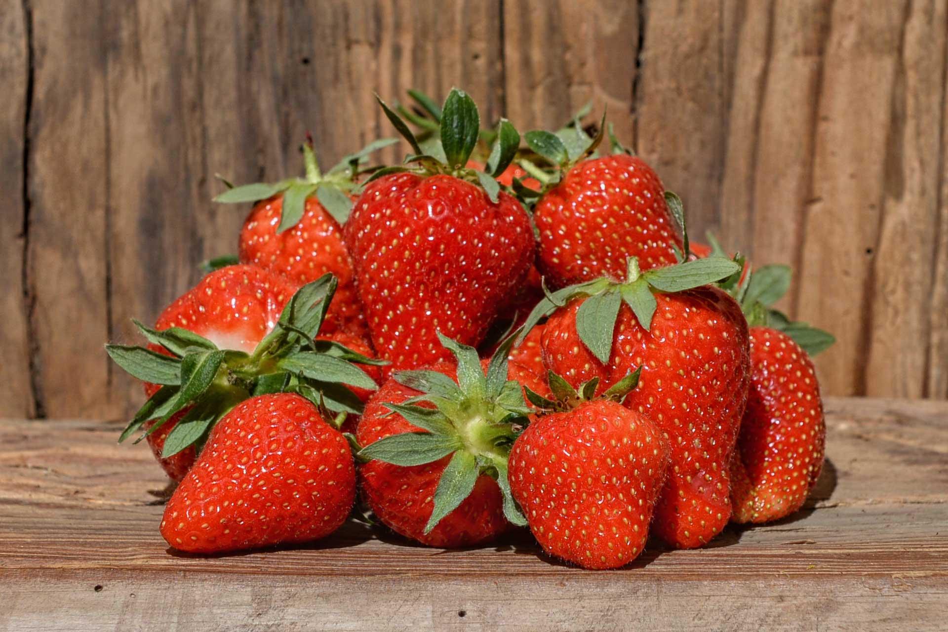 Sind Erdbeeren Obst
