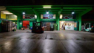 Der Großmarkt Wien/Inzersdorf zählt zu den beständigsten Händlern im Obstsegment