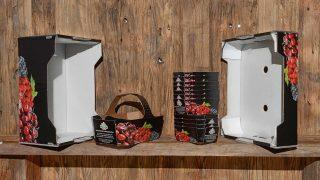 Nachhaltigkeit wird bei der Firma Obst Stelzer GmbH groß geschrieben