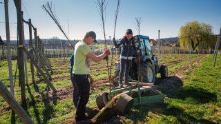 landwirtschaftliche Bearbeitung der eigenen Felder